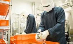 組立・軽作業などの工場内作業系
